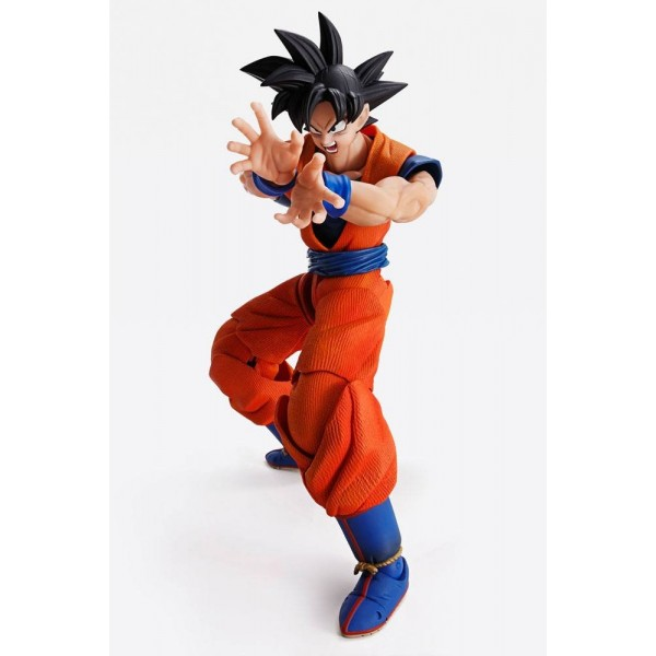 Goku Imagination Works Tamashii Nation